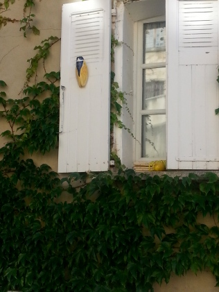 Cigales on windows....
